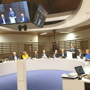 Commissie- en raadsvergaderingen